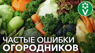 ТОП-10 ОШИБОК ОГОРОДНИКОВ, из-за которых значительно снижается урожайность