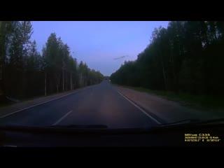 Программа День. Медведи по дорогам бегают #гдетовухте