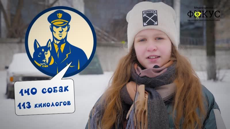 Личный сюжет Анфисы Жуковой Кинологи в УФСИН Как тренируют собак