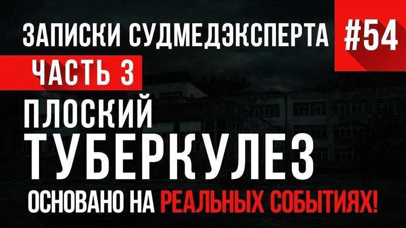 Записки Судмедэксперта 54 «Плоский Туберкулез» Часть 3 (САМАЯ МЕРЗКАЯ РАЗВЯЗКА)
