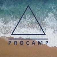 Логотип ProCamp пространство перемен