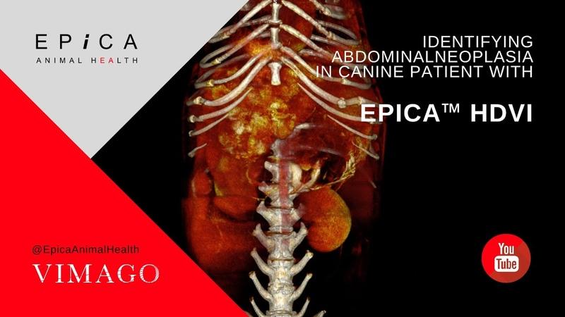 Обнаружение новообразованию в брюшной полости у собаки с помощью КТ Identifying Abdominal Neoplasia in Canine Patient with Epica™ HDVI