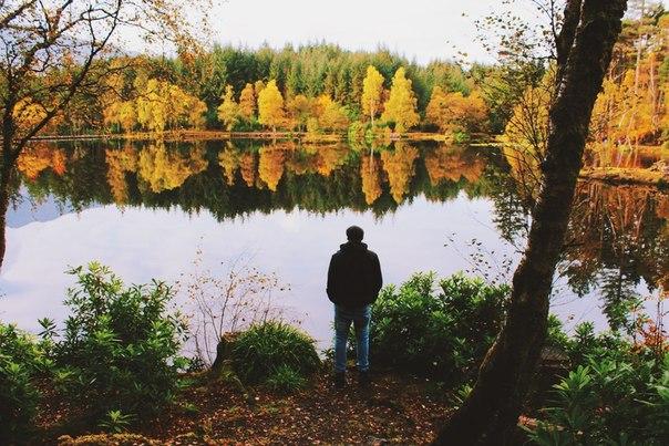 Фото №456244007 со страницы Светланы Степановой