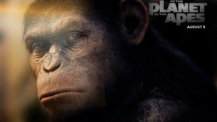 Восстание планеты обезьян / Rise of the Planet of the Apes. фантастика