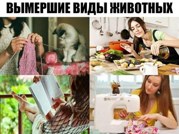 Фото №456306256 со страницы Дмитрия Кудинова