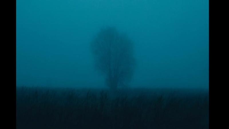 Fog 2 0
