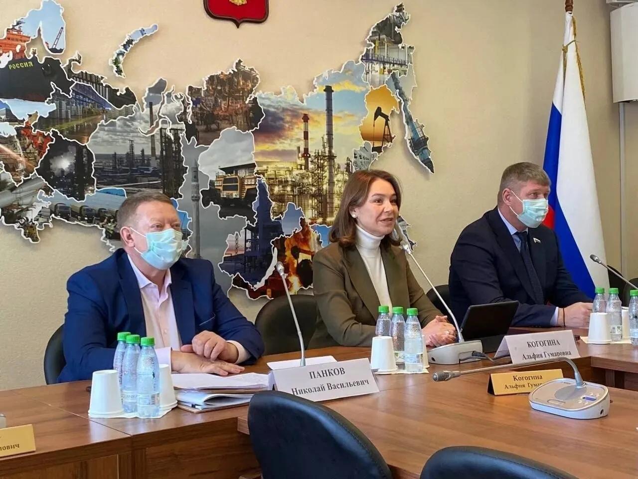 Представители Петровска приняли участие в заседании экспертного совета по устойчивому развитию моногородов