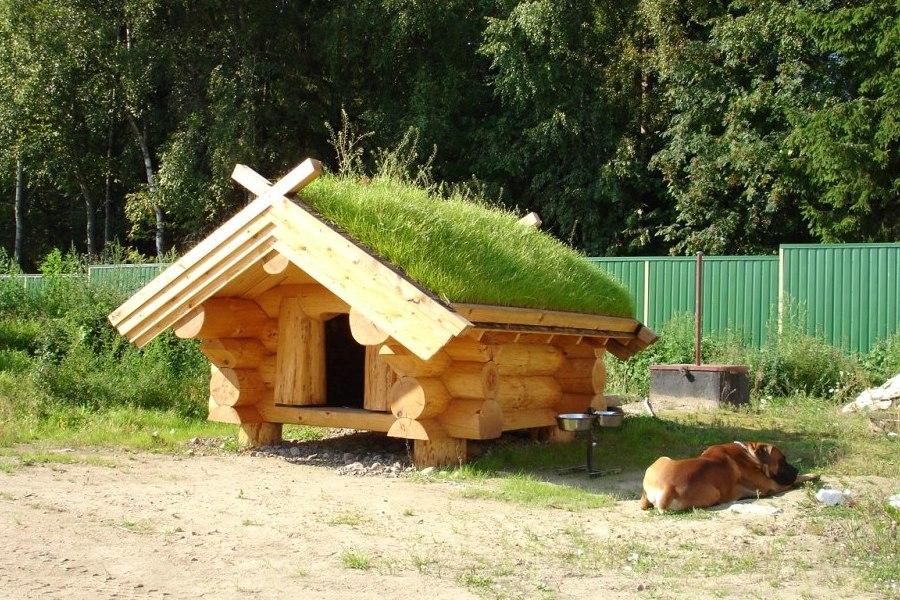 Строительство домов и будок из круглого бревна