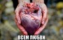Личный фотоальбом Василисы Давыдовой