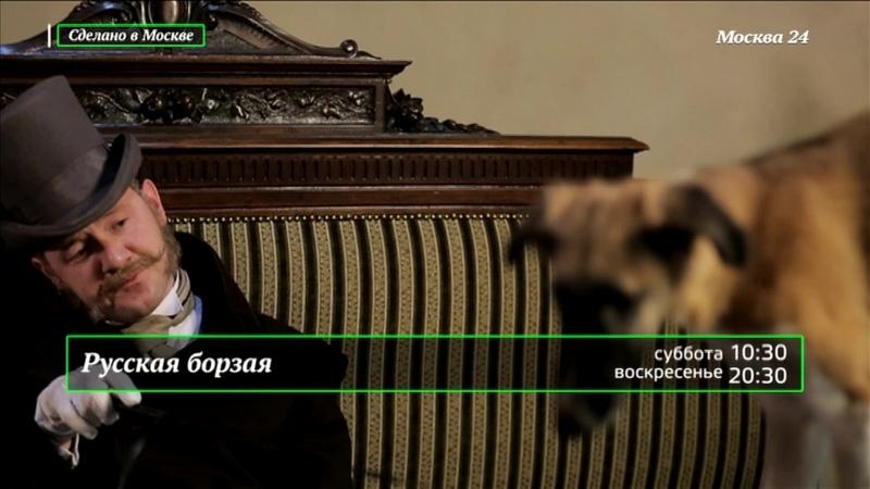 Сделано в Москве Русская борзая