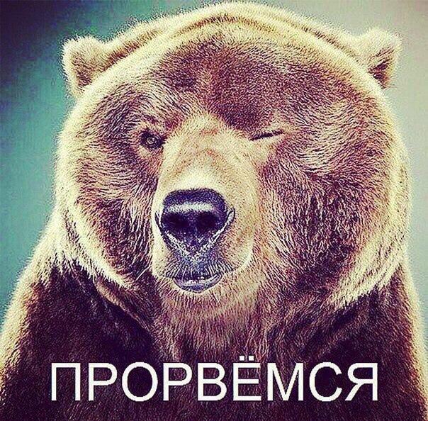 Алексей, 20, Dolgoprudnyy