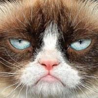 Фотография профиля Ирины Писанчин ВКонтакте