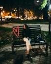 Личный фотоальбом Айданы Сарыбатыр
