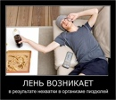 Личный фотоальбом Михаила Смирнова