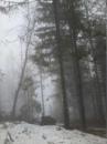 Пиоруньски Андрей | Железнодорожный (Балашиха) | 43