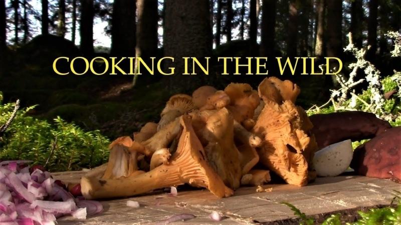 Игровая Модель Шведская пауза Подножный Лесной корм при Исходе ПешкоДралом Cooking In The Wild