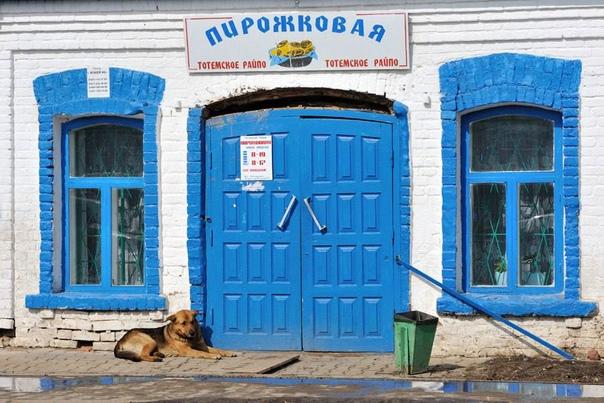 Провинциальная аутентичность ворот пирожковой, вывески и тотемской собаки Город Тотьма, Вологодской области.Фото Виктора