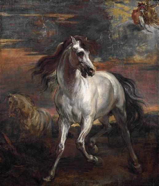 «Конь Ахиллеса», Антонис ван Дейк