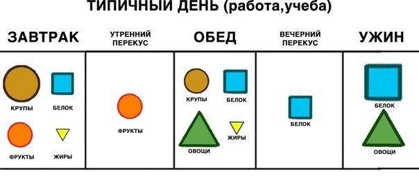 РАСПРЕДЕЛЕНИЕ ЕДЫ В ТЕЧЕНИЕ ДНЯ.