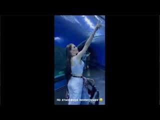 Алена Савкина с Богдашей и семьей посетили океанариум