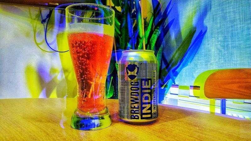 Beer Solo 12 Самоизоляция BrewDog Indie Independent Pale Ale