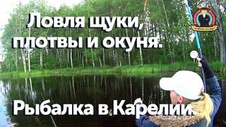 Рыбалка в Карелии.  Ловля щуки, плотвы и окуня. #капитанандрейфёдоров