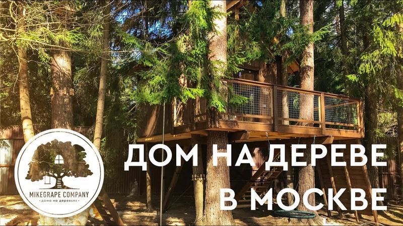 Дом на Дереве Москва Дома на Деревьях Строительство Домик на Дереве Купить Treehouse
