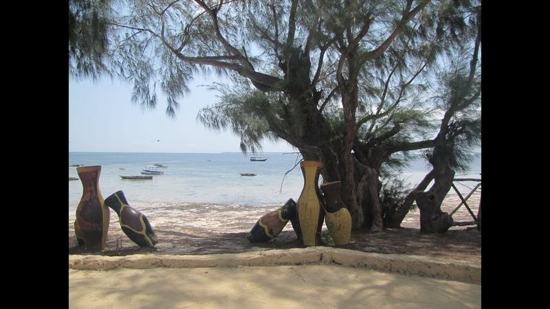015 Занзибар 2019 Танзания ОЧЕНЬ КРАСИВЫЙ ПАРК ОТЕЛЯ РОМАНТИЧЕСКИЕ ВИДЫ СОЧНО Zanzibar Tanzania