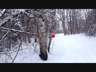 На лыжах в Новый год)