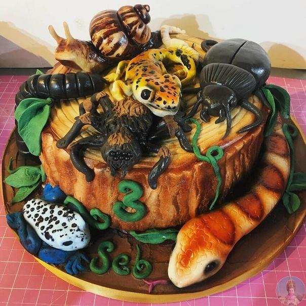Невероятно реалистические торты Молли Роббинс.