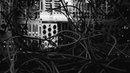 Pain and Horror Ritual Electronics Miasma Moog DFAM and Noise Eng Lapsus OS session