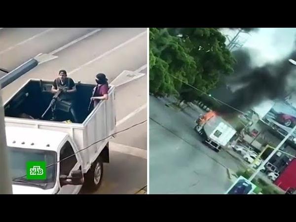 Мышь на свободе как сына наркобарона Коротышки отбили у мексиканской полиции