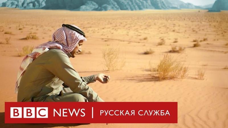 Озеленение пустынь против дефицита воды Документальный фильм Би би си