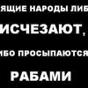 Владимир Власенко