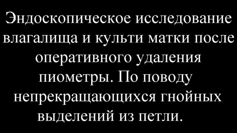 Вагиноскопия у кошки. Вагинит. Мандриков С.А. г. Тамбов ВДЦ Вета.